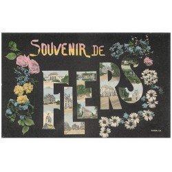 carte postale ancienne 61 FLERS Superbe Lot 10 Cpa. Château Communs Portail Tourelles Cour Honneur Etang, Hôtel de Ville
