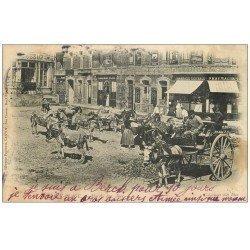 carte postale ancienne 62 BERCK. Marché aux Anes 1905 et Pharmacie