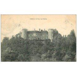 carte postale ancienne 70 CHATEAU DE RAY-SUR-SAÔNE 1905