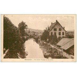 carte postale ancienne 70 HERICOURT. La Lizaine