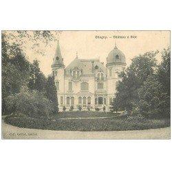 carte postale ancienne 71 CHAGNY. Château Diot