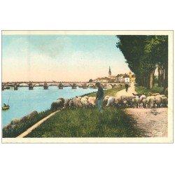 carte postale ancienne 71 MACON. Pâtre et Moutons