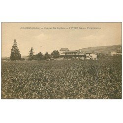 carte postale ancienne 69 JULIENAS. Château des Capitans. Vin Vignes et Vignobles