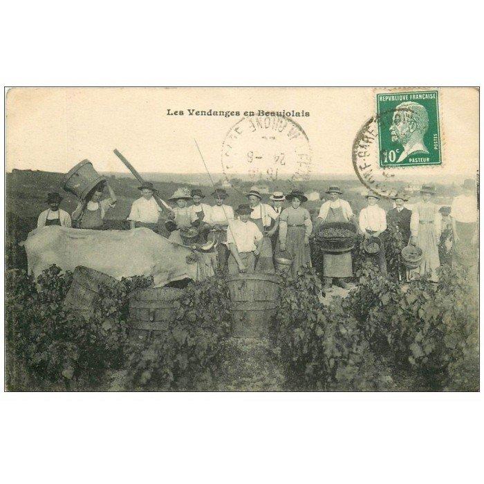 69 villefranche sur sa ne les vendanges en beaujolais - Chambre des metiers villefranche sur saone ...