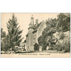 carte postale ancienne 72 CHATEAU-DU-LOIR. Château de Riablé