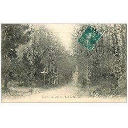 carte postale ancienne 72 FORÊT DE PERSEIGNE. Carrefour des 4 Gardes 1909