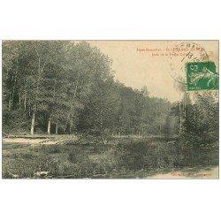 carte postale ancienne 72 SAINT-LEONARD-DES-BOIS. Jetée Forge Collet 1916