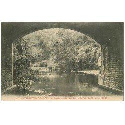 carte postale ancienne 72 SAINT-LEONARD-DES-BOIS. Pont et Puits des Sarrazins