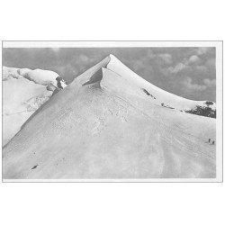 carte postale ancienne 74 CHAMONIX-MONT-BLANC. Les Bosses Dromadaire