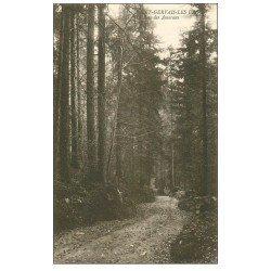 carte postale ancienne 74 SAINT-GERVAIS-LES-BAINS. Bois des Amerans