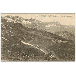 carte postale ancienne 74 SAINT-GERVAIS-LES-BAINS. Gardienne et Vaches Pâturage de Montagne