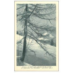 carte postale ancienne 74 SAINT-GERVAIS-LES-BAINS. Mont Joly au Prarion