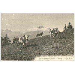 carte postale ancienne 74 SAINT-GERVAIS-LES-BAINS. Vaches Pâturage Col de Voza