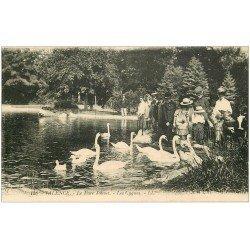 carte postale ancienne 26 VALENCE. Les Cygnes au Parc Jouvet