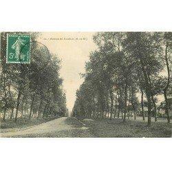 carte postale ancienne 78 MAISONS-LAFFITTE. Avenue de Gambais