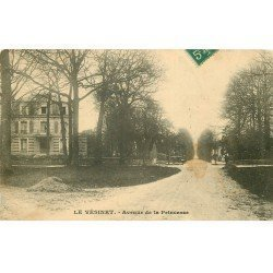 carte postale ancienne 78 LE VESINET. Avenue de la Princesse 1910