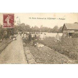 carte postale ancienne 78 LE VESINET. Asile. Le Potager 1925