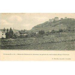 carte postale ancienne 78 VALLEE CHEVREUSE. Vue Route Saint-Rémy