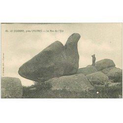 carte postale ancienne 81 CASTRES LE SIDOBRE. Le Roc de l'Oie avec personnage
