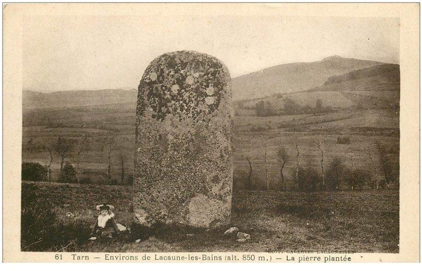 lacaune pierre plantée