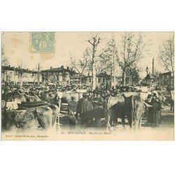 carte postale ancienne 82 MONTAUBAN. Le Marché aux Boeufs 1906