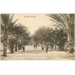 carte postale ancienne 83 BANDOL. Promenade des Palmiers