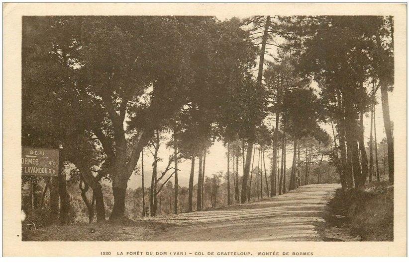 carte postale ancienne 83 COL DE GRATTELOUP. Montée de Bormes Forêt du Dom