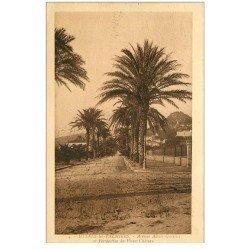 carte postale ancienne 83 HYERES LES PALMIERS. Avenue Alexis Godillot