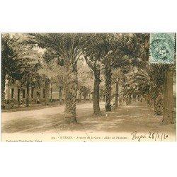 carte postale ancienne 83 HYERES. Avenue de la Gare et Allée de Palmiers 1910