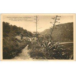 carte postale ancienne 83 ILE DE PORT CROS. Parc de l'Hostellerie Provençale