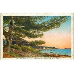carte postale ancienne 83 SAINT-RAPHAEL. Le Lion de Terre et Plage 1933