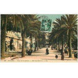carte postale ancienne 83 TOULON. Allée des Palmiers 1913