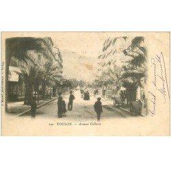 carte postale ancienne 83 TOULON. Avenue Colbert 1903