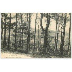 carte postale ancienne 14 HOULGATE. Bois de Boulogne 1912