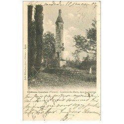 carte postale ancienne 86 CHATEAU LARCHER. Lanterne des Morts dans le Cimetière 1902