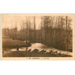 carte postale ancienne 87 LE LIMOUSIN. Paysage Bergère et troupeau de Moutons 1955