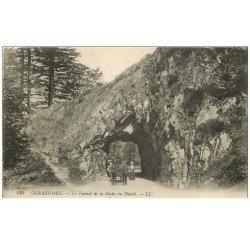 carte postale ancienne 88 GERARDMER. Attelage au Tunnel de la Roche du Diable