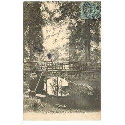 carte postale ancienne 88 GERARDMER. Le Pont des Singes 1905