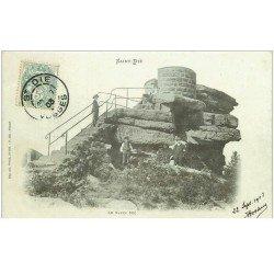 carte postale ancienne 88 SAINT DIE. Le Sapin Sec 1903