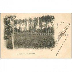 carte postale ancienne 89 ARCES. Les Grands Prés 1904