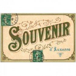 carte postale ancienne 89 AUXERRE. Souvenir écrit en velour 1914