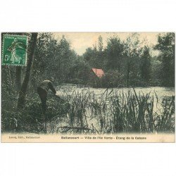 carte postale ancienne 91 BALLANCOURT SUR ESSONNE. Villa de l'Ile Verte et Etang de la Cabane 1908 avec Pêcheur