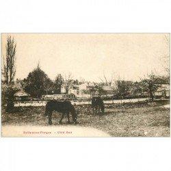 carte postale ancienne 91 BRIIS SOUS FORGE. Chevaux dans les Prés