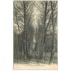 carte postale ancienne 91 BRUNOY. Avenue Charles Christofle vers 1903...