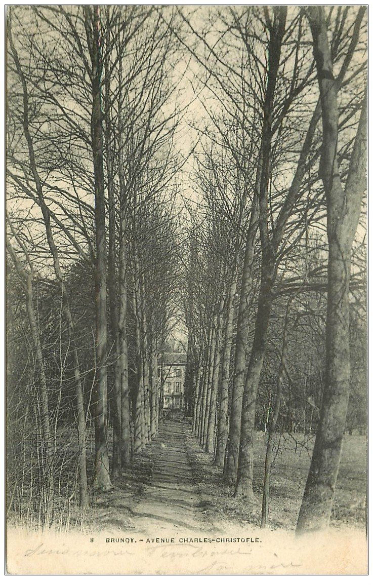carte postale ancienne 91 BRUNOY. Avenue Charles Christofle vers 1903...