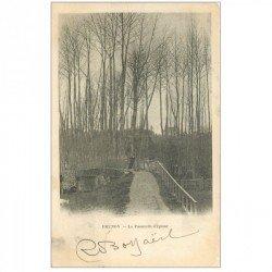 carte postale ancienne 91 BRUNOY. La Passerelle d'Epinay 1902