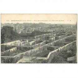 carte postale ancienne 93 MONTREUIL. Le Clos des Pêches 1916