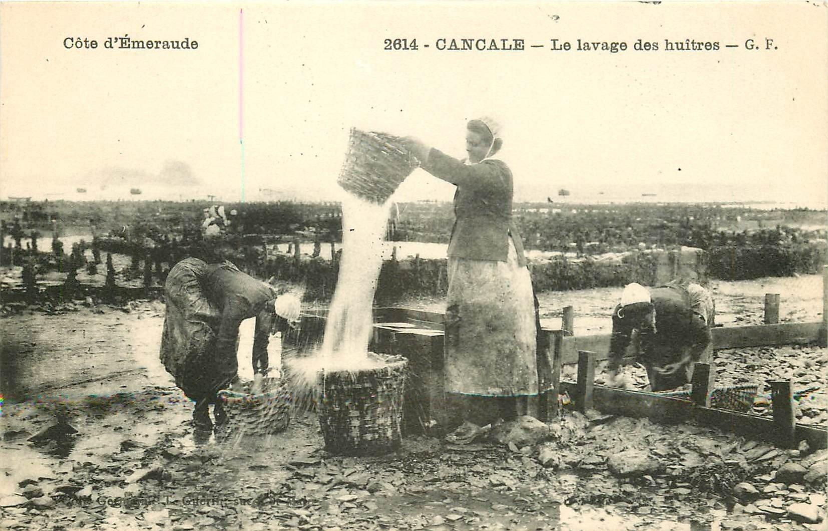 35 CANCALE. Le lavage des Huîtres. Métiers de la Mer Poissons et Crustacés bis