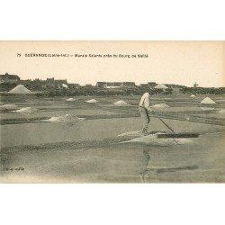 44 GUERANDE. Marais Salants près de Bourg de Saillé. Sel Mulons et Paludier