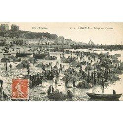 35 CANCALE. Le Triage des Huîtres 1912 Ostréïculteurs Métiers de la Mer